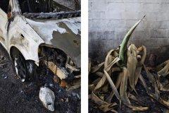 Retratos dun incendio. As Neves,  2017.